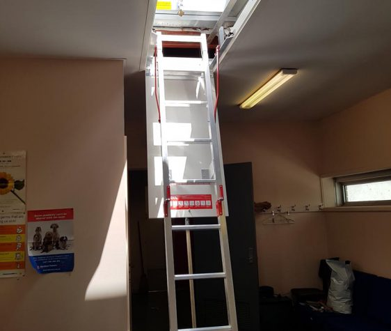 Fold Down Ladders (5)