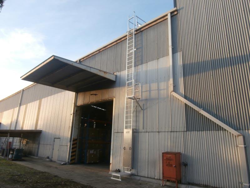 Vertical Static Line Ladders