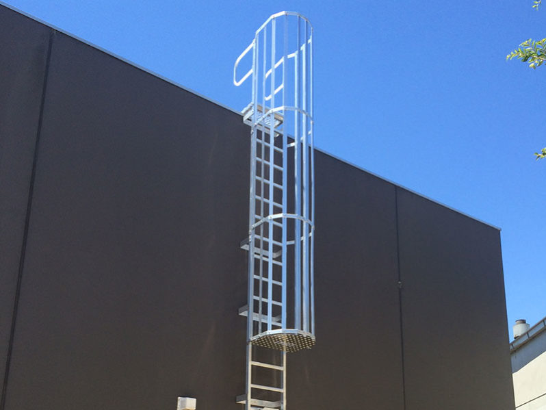 Caged Ladders